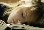 Lernen im Schlaf